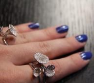 Le mystère des diamants noirs