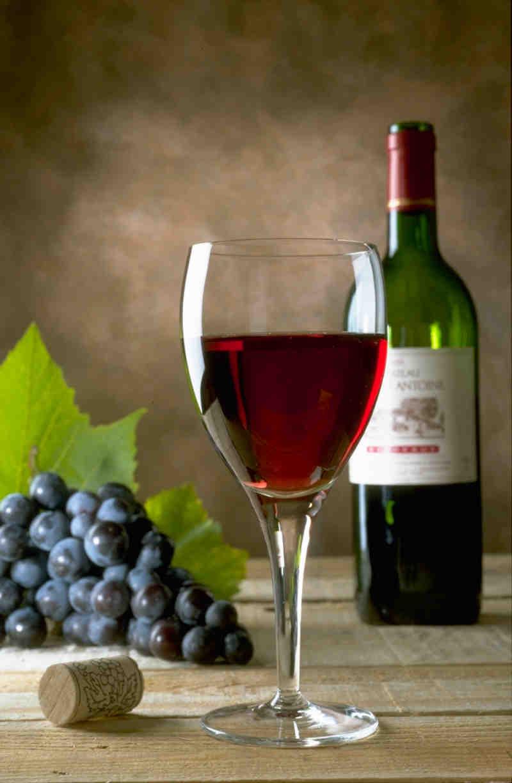 A l'image du Vin Saint Julien